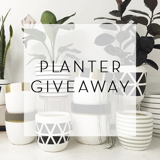 Planter Giveaway – Design Twins