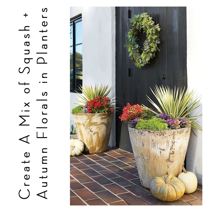 fall planter arrangements